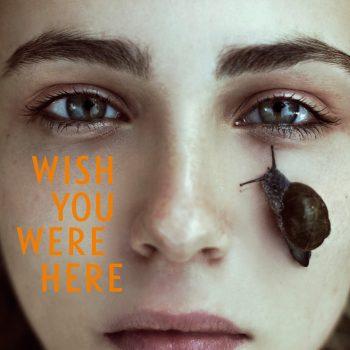 Wish you were here (2)