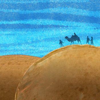kameelweet